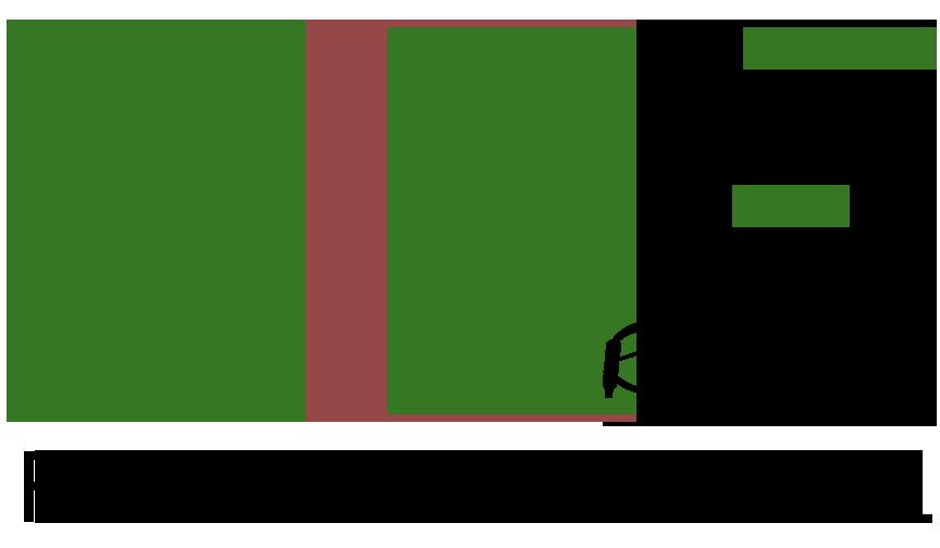 SFE Services